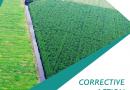 Corrective Action – Tata Kelola Gambut